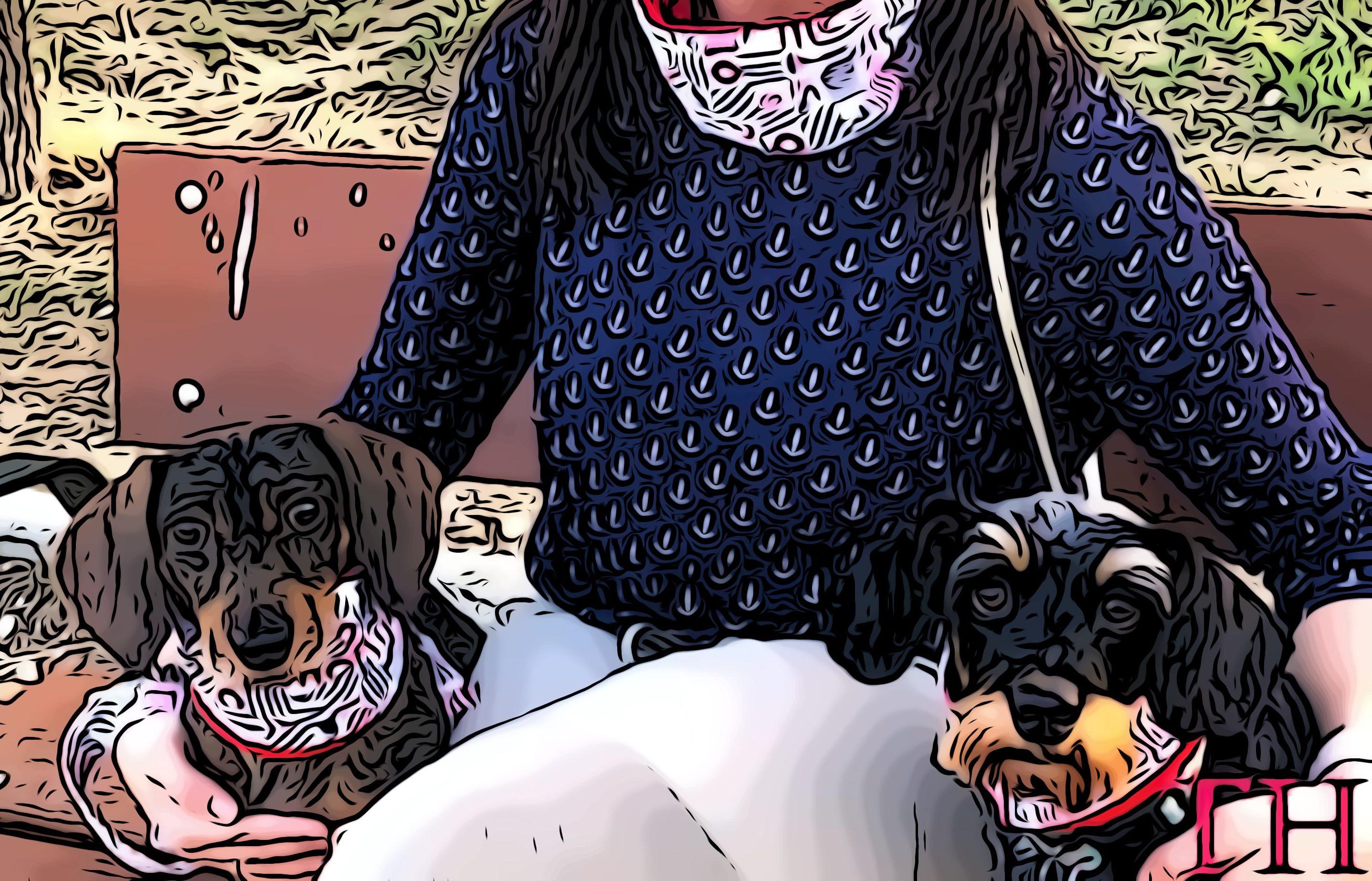 Braga para perro DIY