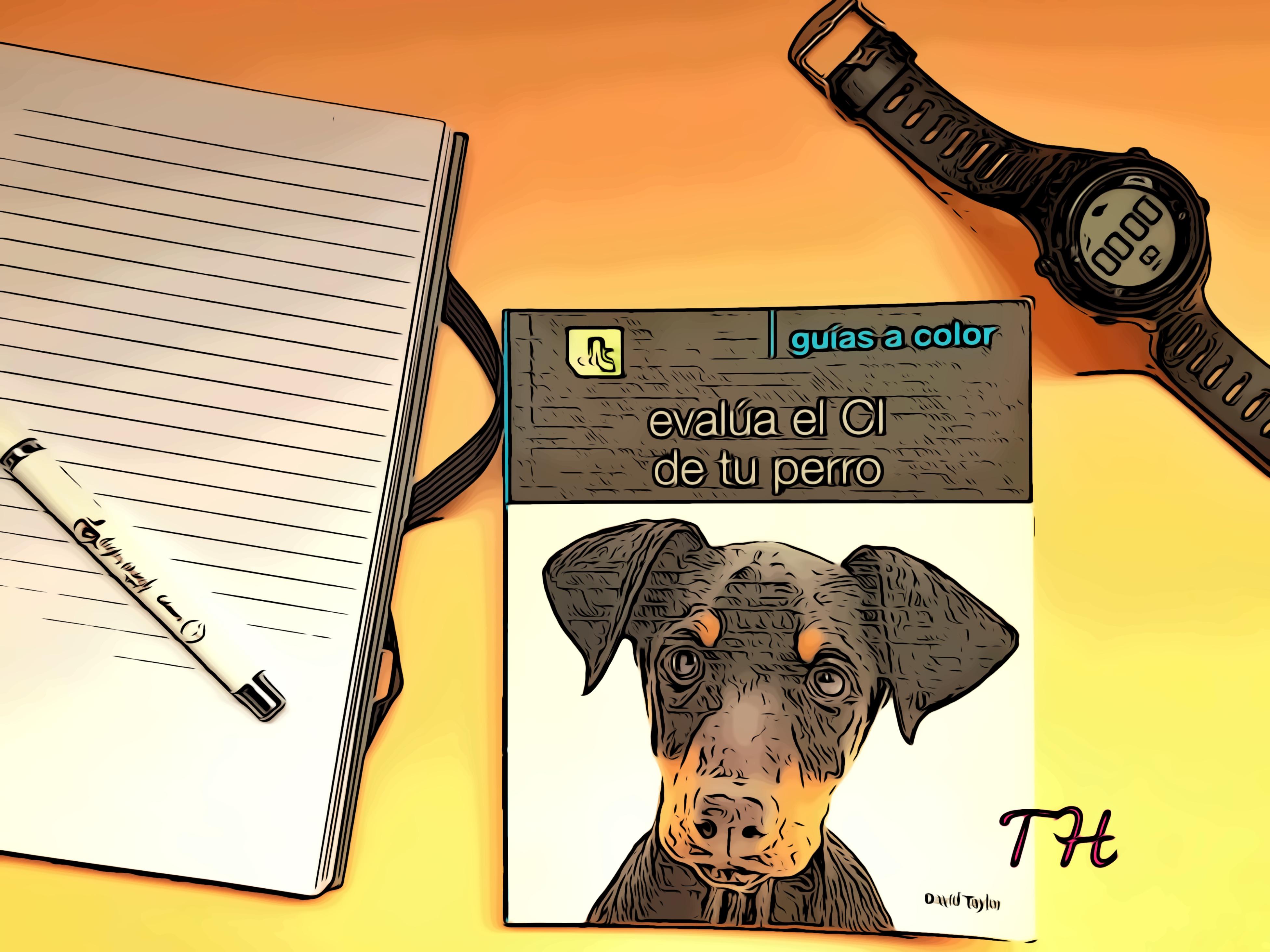 Evalúa el coeficiente intelectual de tu perro