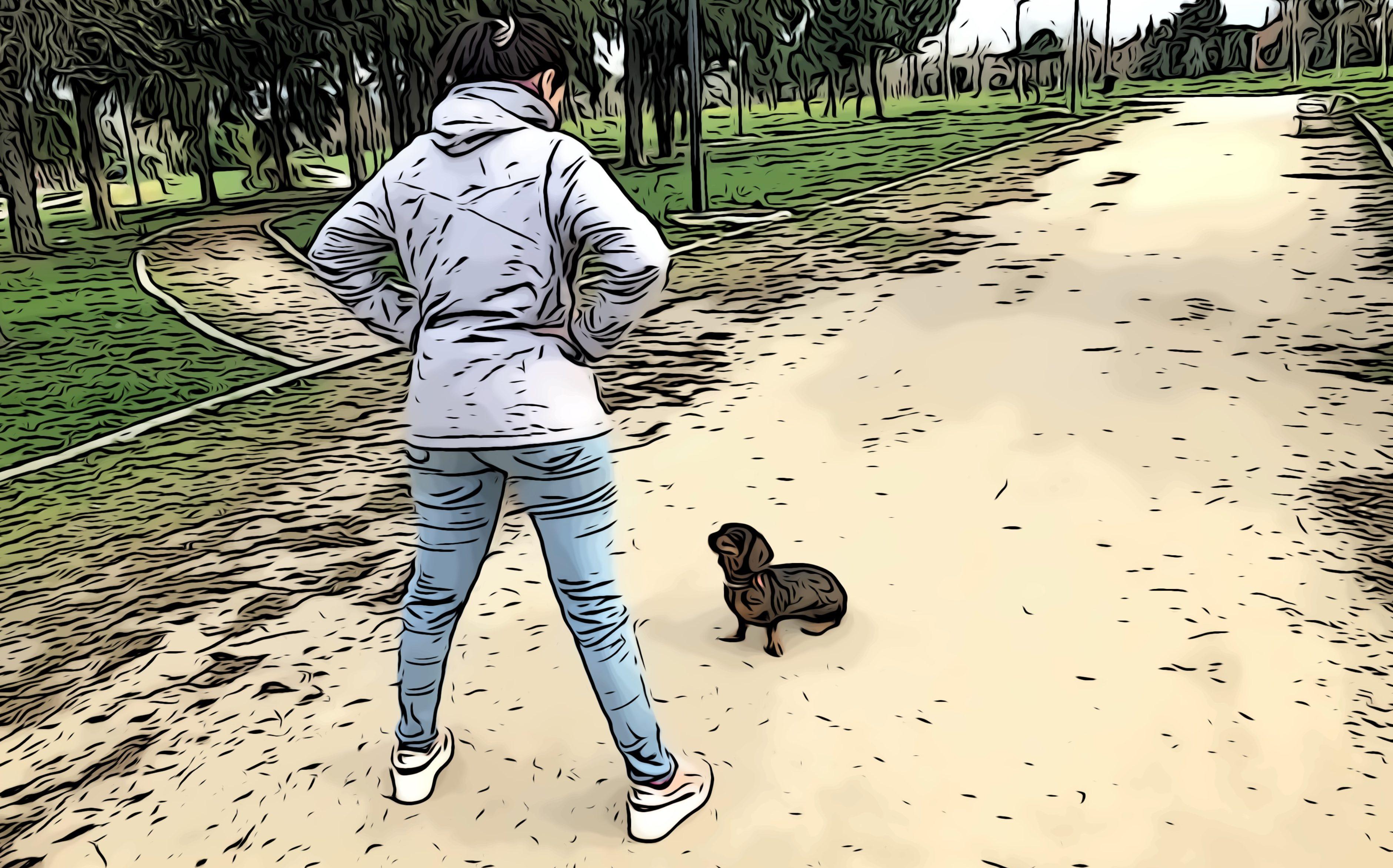 lenguaje corporal para perros